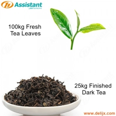 100kg Fresh Tea Leaves For Processing 25kg Finished Dark Tea Processing Production Machines