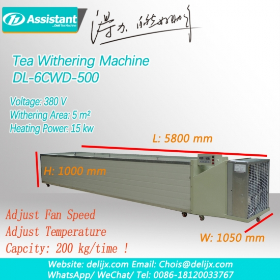 Black Tea Leaves Withering Machine 6CWD-500