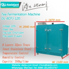 Tea Oxidation Steps Black Tea Fermentation Requirements Tea Fermenting Cabinet